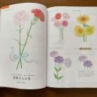 水彩色鉛筆つき 美しい花ぬり絵